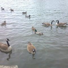 Photo taken at Humboldt Lagoon by Melanie V. on 3/30/2013