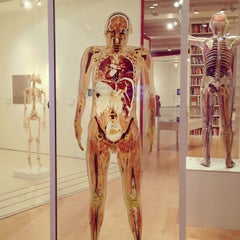 Photo taken at Wellcome Collection by Kelly J. on 5/23/2013