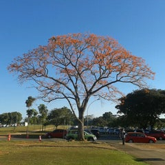 Photo taken at Universidade de Brasília (UnB) by Carla L. on 7/8/2013