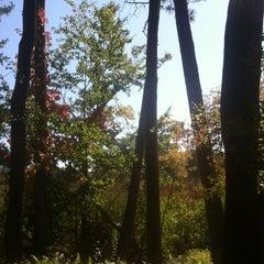 Photo taken at Mass Audubon Ipswich River Wildlife Sanctuary by David C. on 9/28/2014