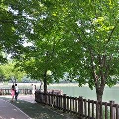 Photo taken at 율동공원 (Yuldong Park) by Il Hwan K. on 6/29/2013