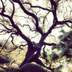 Photo taken at Congo Square by Christopher R. on 3/7/2013