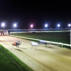 Photo taken at Henlow Dog Stadium by Ingo F. on 12/5/2015