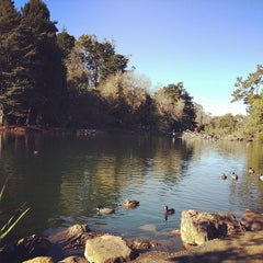 Photo taken at Golden Gate Park by Nathan M. on 12/19/2012