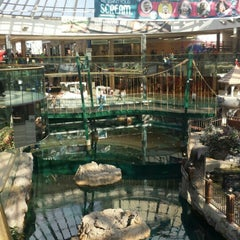 Photo taken at West Edmonton Mall by Michael B. on 7/24/2015