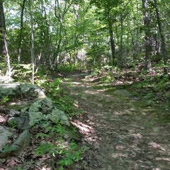 Photo taken at Oswegatchie Hills Nature Preserve by Mark P. on 6/23/2014