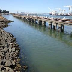 Photo taken at San Francisco Bay Ferry - Alameda Main Street Terminal by Elizabeth P. on 7/1/2013
