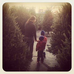 Photo taken at Alma's Garden Center by Patrick D. on 12/12/2013