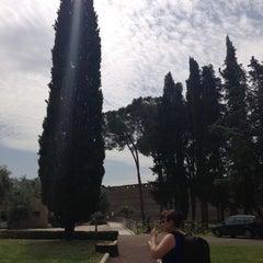 Photo taken at Villa Adriana by Adam B. on 5/28/2013