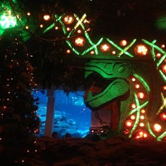 Photo taken at Rainforest Cafe Dubai by Evgeniy ♋ O. on 12/12/2012