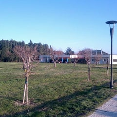 Photo taken at Parco Miralfiore by Andrea G. on 1/1/2013