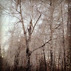 Photo taken at Новочеремушкинская ул., 50 by sevranty on 12/23/2012