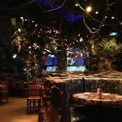 Photo taken at Rainforest Cafe Dubai by Марина П. on 5/19/2013