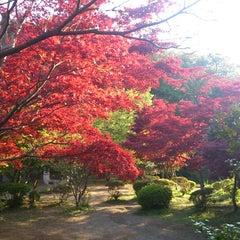 Photo taken at 源氏山公園 by Masakazu M. on 4/13/2013