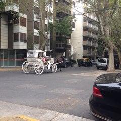 Photo taken at La Josefina by Svetlana K. on 3/21/2015