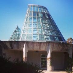 Photo taken at San Antonio Botanical Garden by Ana C. on 12/28/2012