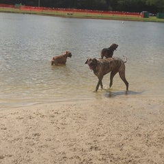 Photo taken at James Island County Park Dog Park by Sam T. on 5/18/2013