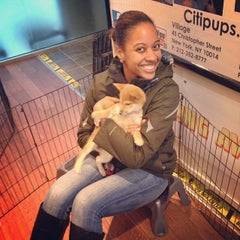 Photo taken at Citipups Chelsea by Anthony T. on 12/3/2013