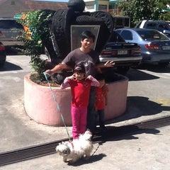 Photo taken at Don Bosco Parish by Tani V. on 11/3/2012