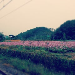Photo taken at 파주역 (Paju Stn.) by Amy S. on 10/8/2013