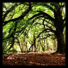 Photo taken at Hampstead Heath by Delly B. on 10/13/2012