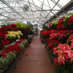 Photo taken at Nicks Garden Center by Matthew D. on 11/25/2012