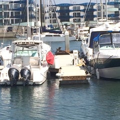 Photo taken at Marina Del Rey pier by Miguel M. on 6/15/2014
