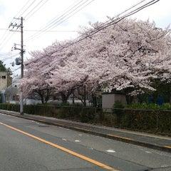 Photo taken at 大阪府立大学 中百舌鳥キャンパス by しょうたろー on 4/3/2015
