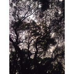 Photo taken at Rua Itapeva by Thais A. on 9/21/2014