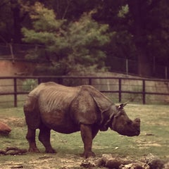 Photo taken at The Oklahoma City Zoo by Michelle P. on 10/22/2012