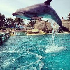 Photo taken at Dolphin Point by Matt R. on 3/4/2013