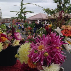 Photo taken at Manassas Farmer's Market by Erin K. on 8/23/2014