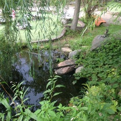 Photo taken at Big Stone Mini Golf & Sculpture Garden by Lily on 8/20/2014