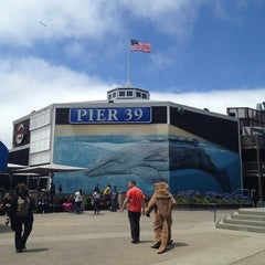 Photo taken at Pier 39 by Mia S. on 7/15/2013