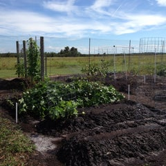 Photo taken at CCCI Community Garden by mLehua on 10/19/2012