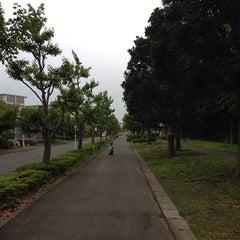 Photo taken at 富岡総合公園 by sakana on 5/6/2014