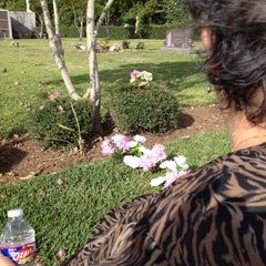 Photo taken at Forest Park Cemetery by Jayme on 11/10/2014