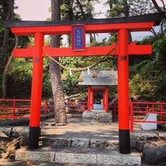 Photo taken at ドッグラン桜島SA / Dog Run Sakurajima SA by paolettayeah on 8/15/2013