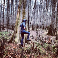 Photo taken at Congaree National Park by Lydia on 12/15/2012