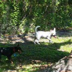 Photo taken at Al Lopez Dog Park by Jon on 7/27/2014