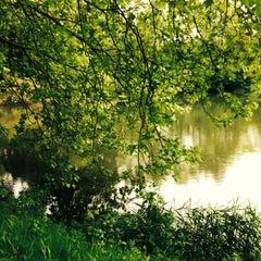 Photo taken at Lac de Lognes by Nicole on 5/1/2014