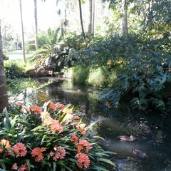 Photo taken at E.G. Waterhouse National Camellia Gardens by Brian C. on 9/23/2012
