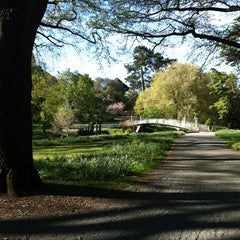Photo taken at Christchurch Botanic Gardens by Urs S. on 10/10/2012