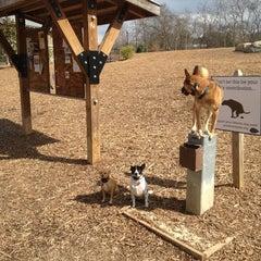 Photo taken at Piedmont Park Dog Park by Justin H. on 3/12/2013