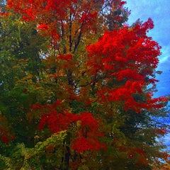 Photo taken at New Hampshire by N. K. on 10/24/2015