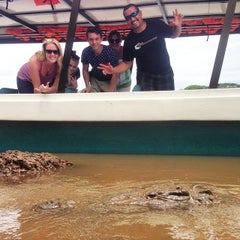 Photo taken at Jose's Crocodile River Tour by Croocodile T. on 8/15/2014