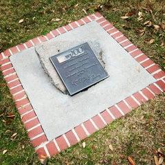 Photo taken at University of South Carolina by University of S. on 3/5/2013