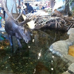 Photo taken at Bass Pro Shops by Marie on 2/22/2013