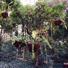Photo taken at Lotus Land by sgt jojo on 11/16/2014