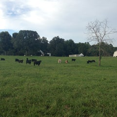 Photo taken at The Pasture by Conor M. on 8/26/2013